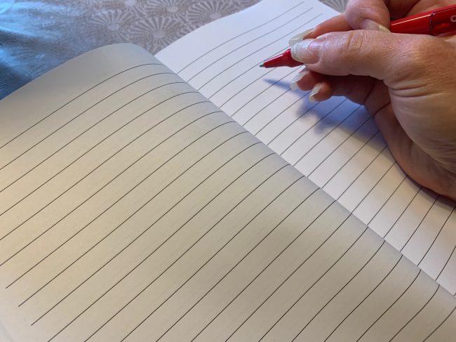 Beispiel Affen Notizbuch mit Linien